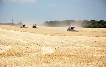 UKRAINE PREPARES TO FEED THE WORLD