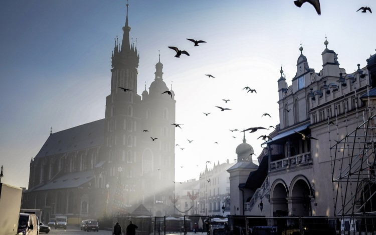 UKRAINE IN POLAND: Record numbers of Ukrainian students studying at Polish universities