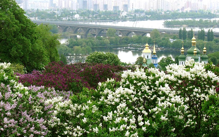 TOURISM INDUSTRY: Kyiv sees 50% rise in international tourists as visitors return to Ukraine following the scares of 2014