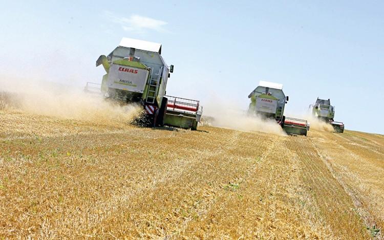 EUROPE'S BREADBASKET: Moratorium robs Ukraine of agricultural superpower status